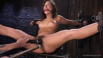 Fucked Over Fanatical Immobilizes Juicy Abella Danger And Despair Her Hirsuite Clit