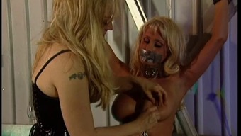 Great Tits Blond Caught Just Like A Slave