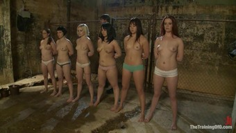 Seven Sexy Chicks Get Involved And Humiliated Right By Their Get Good At