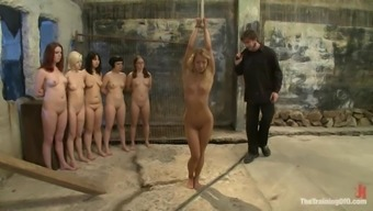 Perverted Babes Have Undergone Some Torment In This Particular Bdsm